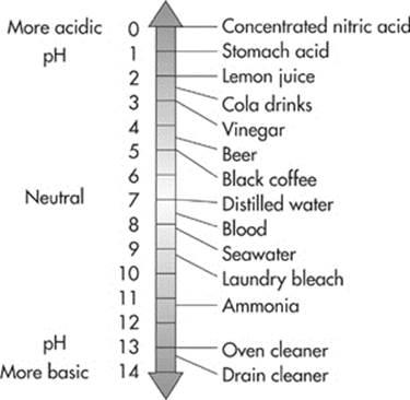 the acid test the chemistry of life cracking the ap biology exam. Black Bedroom Furniture Sets. Home Design Ideas