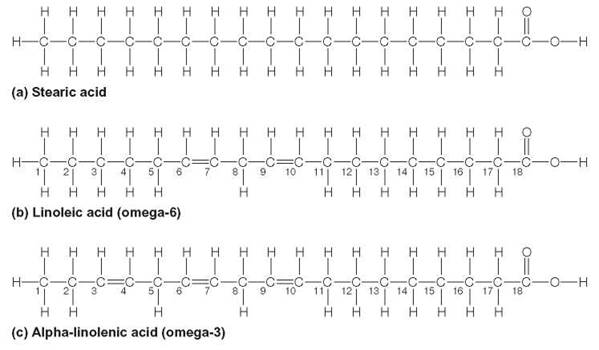 image gallery omega3 structure