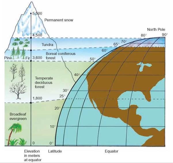 latitude relationship to elevation and tempurature