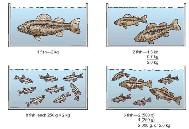 Carrying Capacity - Population Ecology - EVOLUTION AND ...