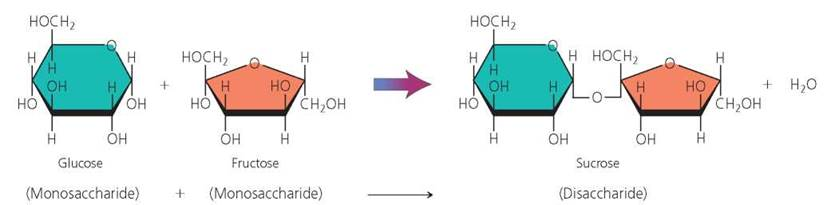 Galactose Structure Diagram Chemistry Comes to Lif...