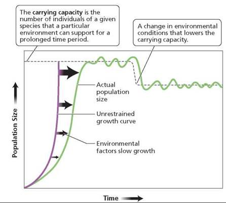 the issue of population growth and its limits David l rust stanford university the key issue is not the resources to limit population growth in the fastest-growing areas.