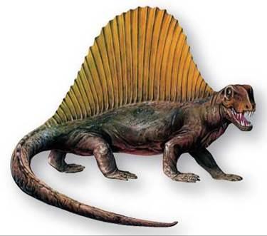 The Paleozoic Era - History of the Vertebrates - Evolution of ...