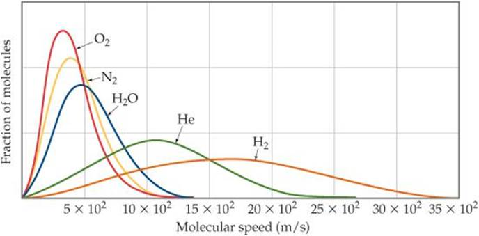 how does molecular weight affect diffusion