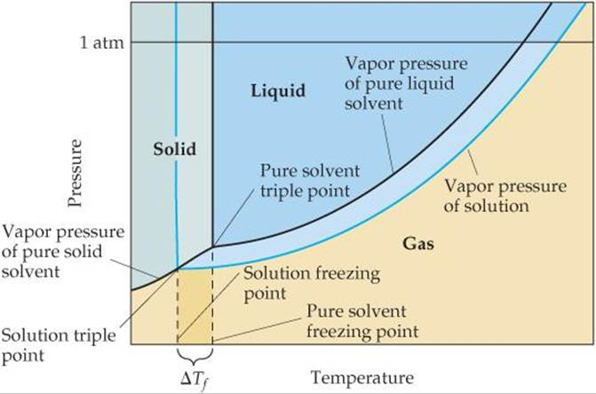 colligative properties - freezing-point depression and molar mass essay Read this essay on colligative properties: freezing pointdepression and molar mass come browse our large digital warehouse of free sample essays get the knowledge.