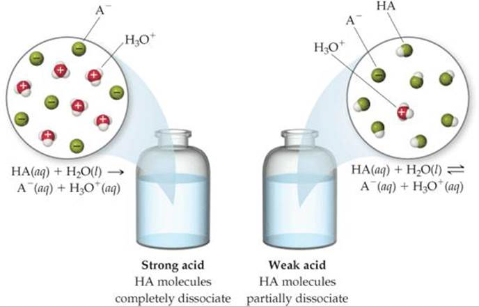 Weak Acids - Acid U2013base Equilibria