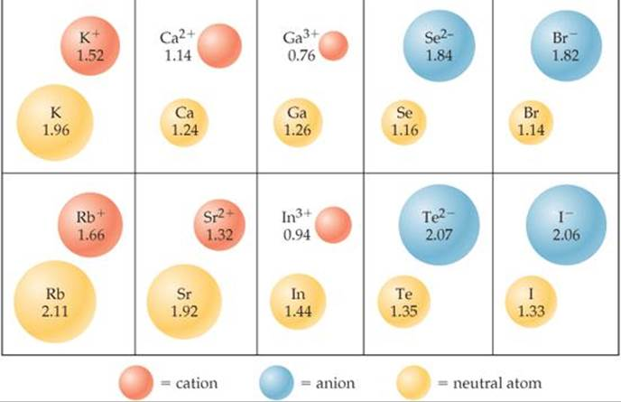 Sizes of atoms and ions periodic properties of the elements how do cations of the same charge change in radius as you move down a column in the periodic table urtaz Gallery