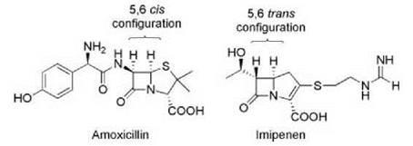beta lactam structure