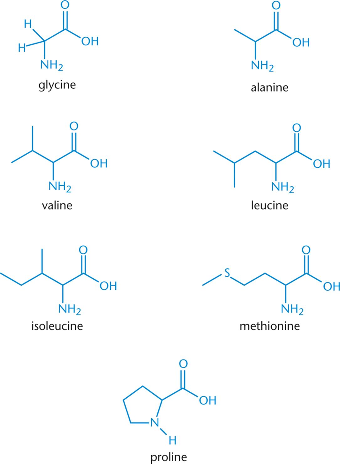 Amino Acids Found In Proteins Amino Acids Peptides And