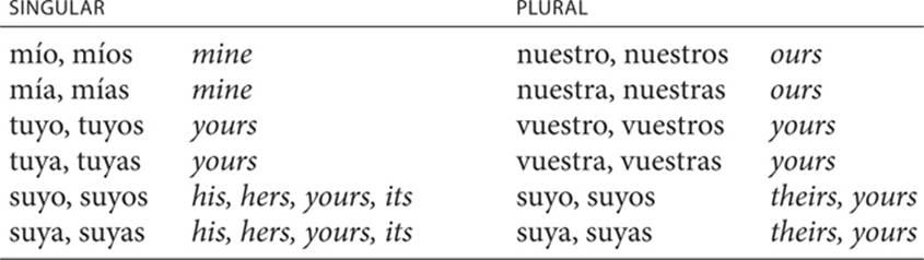 Possessive pronouns - PRONOUNS - Spanish Pronouns and Prepositions -  Practice Makes Perfect