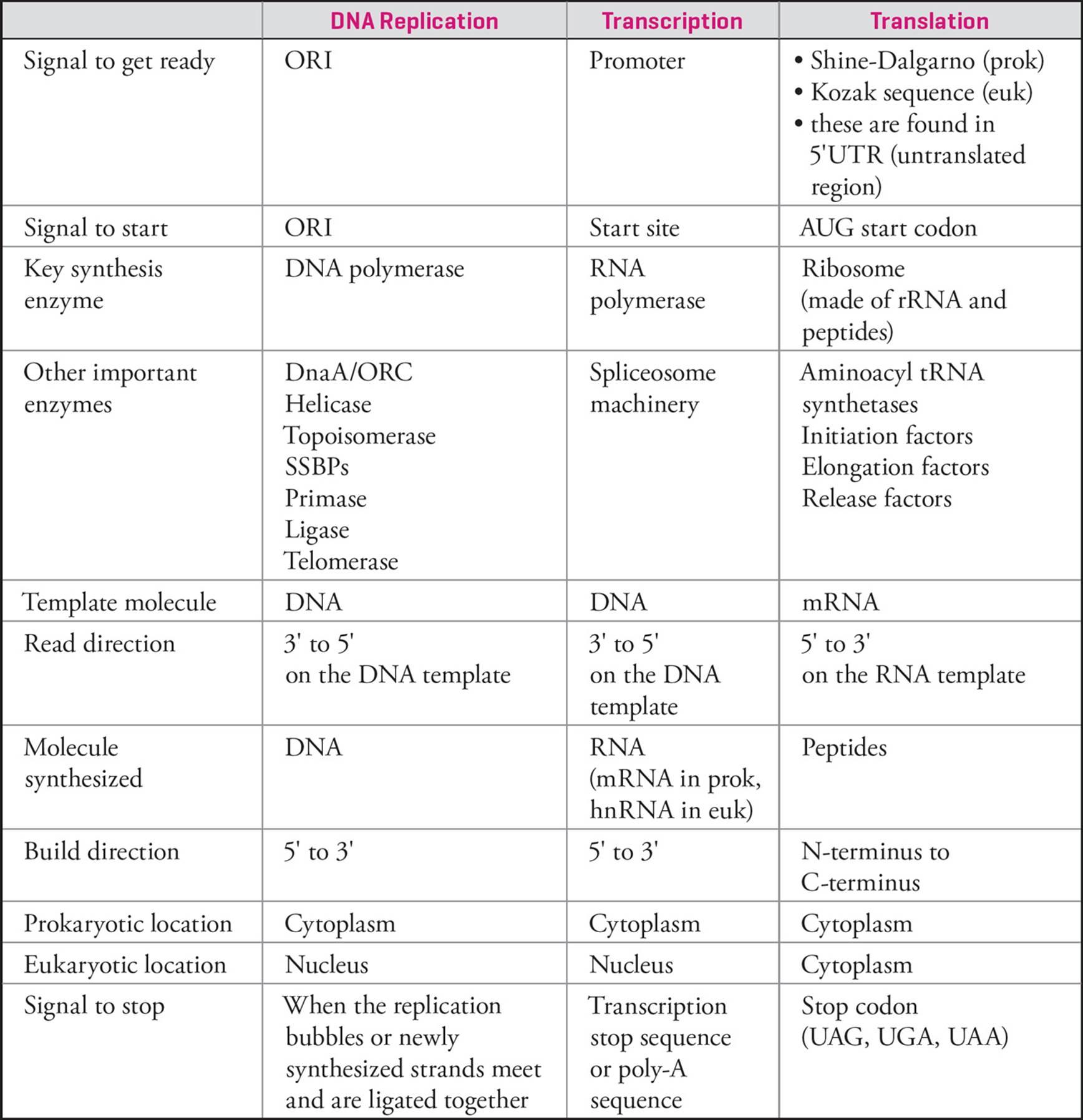 Molecular Biology - MCAT Biology and Biochemistry